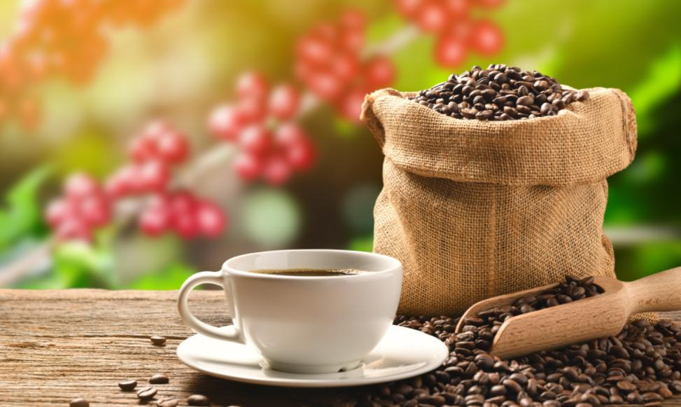 A JDE Peet's não teme a inflação dos custos da cadeia de suprimentos conforme a crise do café no Brasil se aproxima